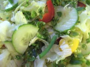 Salat mit Vogelmiere